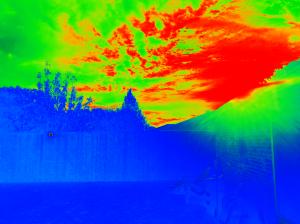 morning-sun_infrared