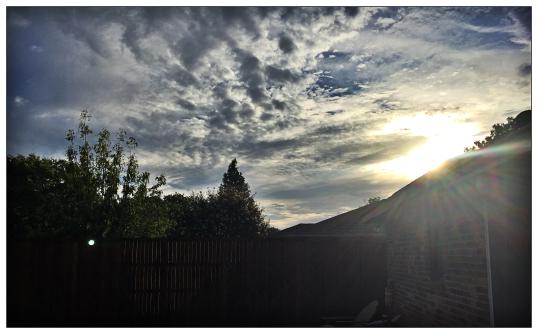 morning-sun_ingrid-filter