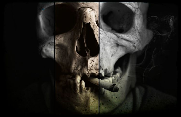 skull-and-crossbones-1418827_1920-edit