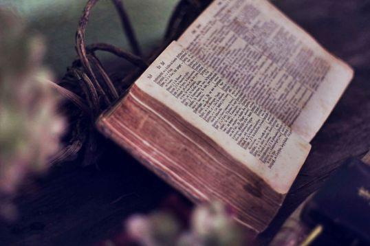 book-1210029_1920