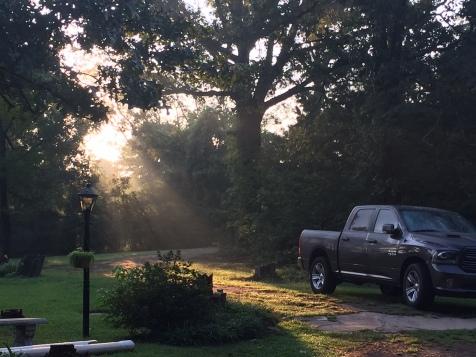 IMG_1678 Morning Sun Glow