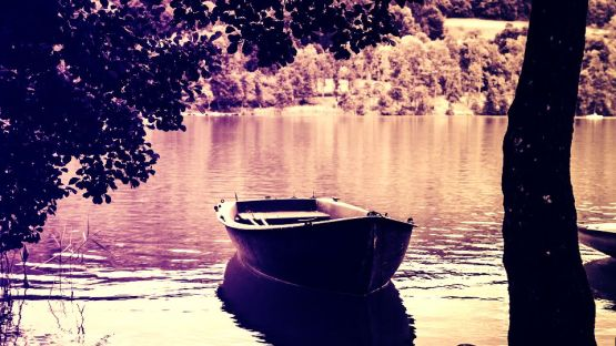 rowing-boat-2754067_1920