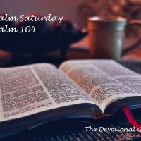 Psalm 104: Using Your Creative Gifts for His Glory and Praise