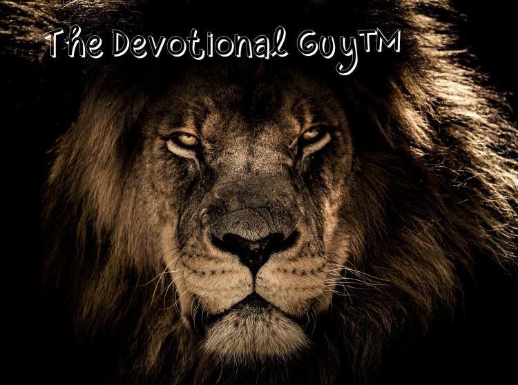 african-lion-2888519_1920 TDG