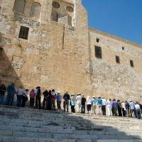 Psalm Saturday | Remaining Steadfast